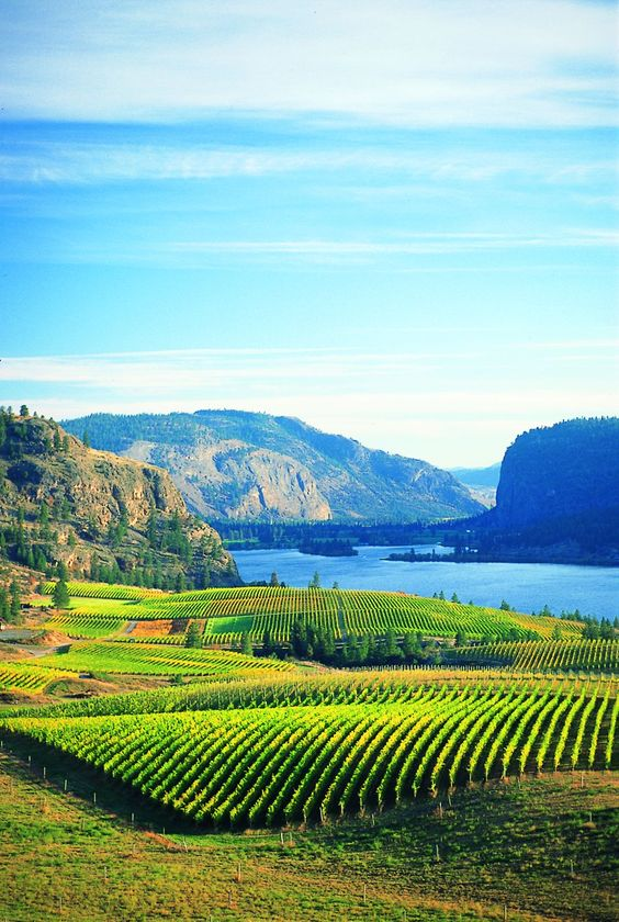 Okanagan, BC, Canada. Haven't been back in 2 years but, I still call this place my home :) beautiful!