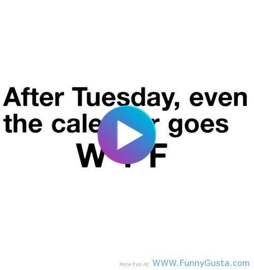Funniest Quotes Ever Funny Quotes Top Funniest Quotes In 2020 Funniest Quotes Ever Funny Quotes Quotes