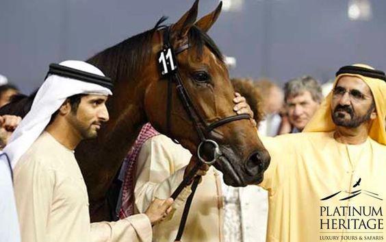 Dubai World Cup #Dubai #Meydan #Race #Horses