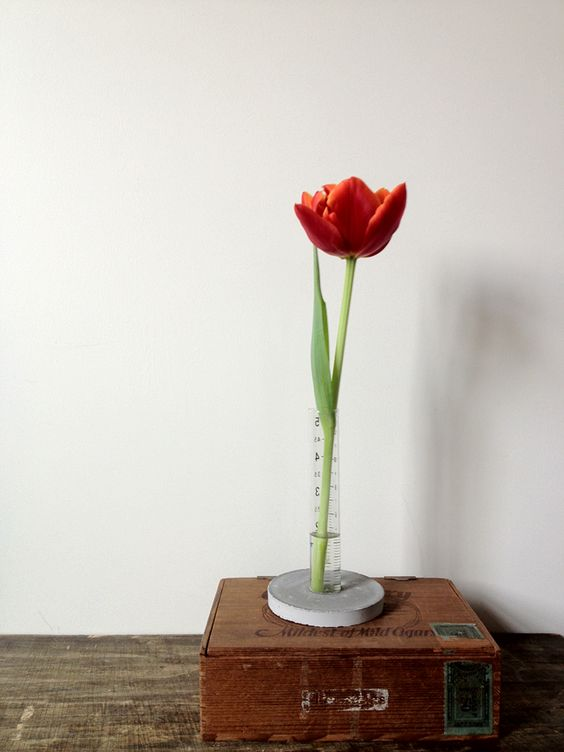 A Daily Something | diy | concrete + cylinder vase