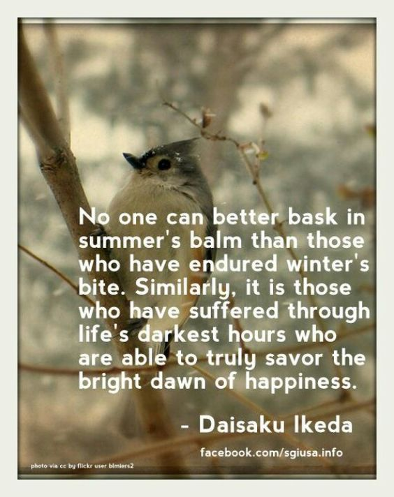 Suffering and Happiness. Daisaku Ikeda quote.: