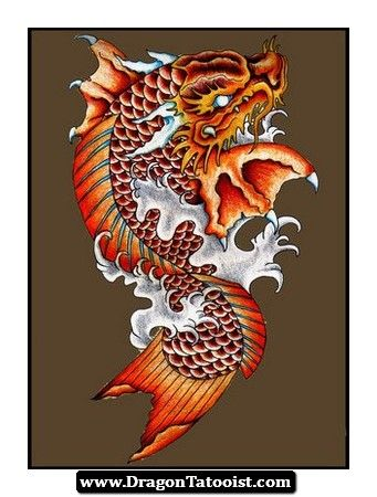 Koi dragon tattoo ideas pinterest koi dragon tattoo for Dragon fish tattoo