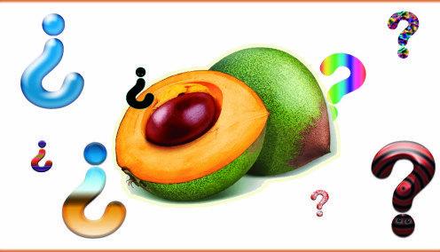 diabetes saludable productos horneados