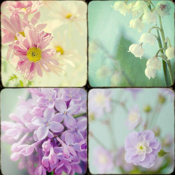 Flower Fantasies by judy stalus, via Flickr