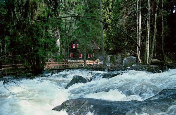 #Saussbachklamm bei #Waldkirchen im Bayerischen Wald #Bayern