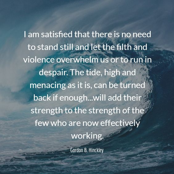 I am satisfied that there is no need to stand still and let the filth and violence overwhelm us or to run in despair. The tide, high and menacing as it is, can be turned back if enough...will add their strength to the strength of the few who are now effectively working.