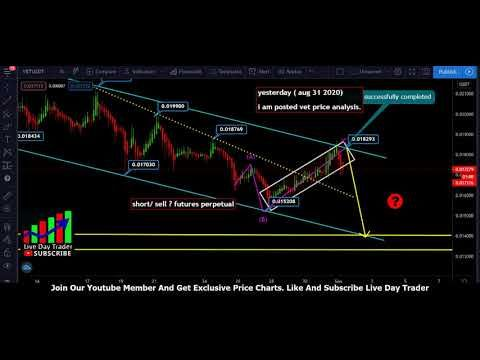 Vechain Vet Price Prediction September 1st 2020 September 1 Predictions Vets