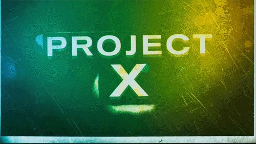 4. Attend a party on the level of Project X