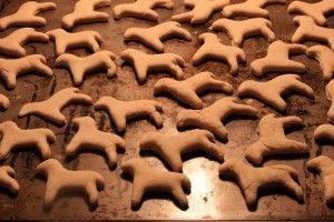 Galletas caseras para perros: cuatro recetas sanas y baratas | EROSKI CONSUMER