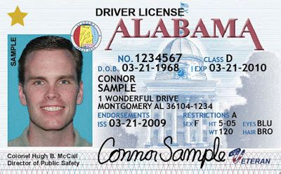 Alabama Drivers License Template Download Free