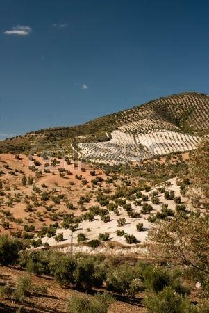 Paisaje de Andalucía en el sur de España