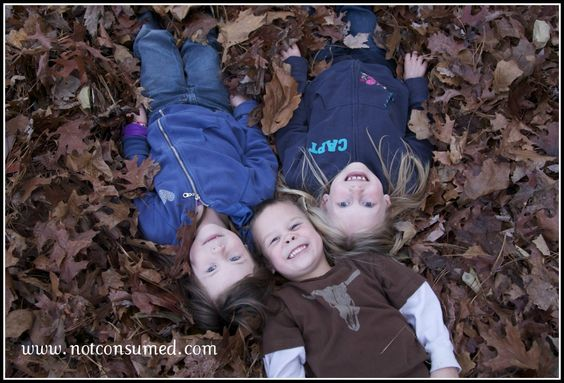 Roll in the leaves {Free family fun...follow the link for more ideas!}
