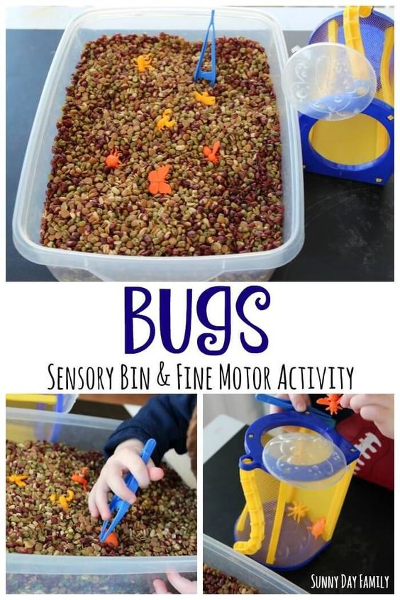 Exploring Activities And Fine Motor On Pinterest