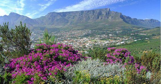 Nachricht: Traumziel Südafrika - 10 Insidertipps: So werden Sie süchtig nach Kapstadt - http://ift.tt/2iA3qba #story