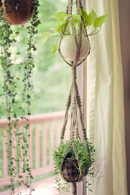 Macrame Plant Hangers Plant Hangers And Macrame On Pinterest