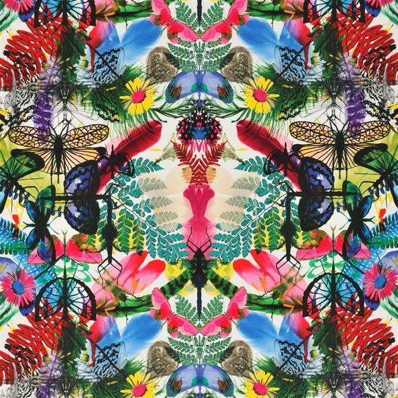caribe - perroquet