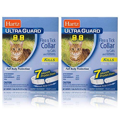 Ultra Flea Collars For Kittens Fleas Flea Collar Kittens