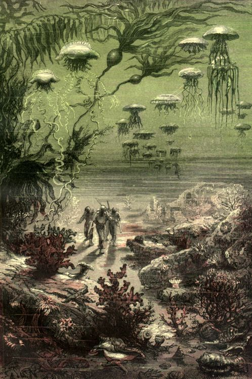 """""""Vingt mille lieues sous les mers"""", Jules Verne (1866-69) -- 118 illustrations by Alphonse de Neuville and Édouard Riou"""