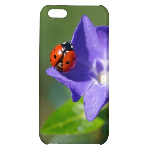 Ladybug on Periwinkle iPhone 5C Case