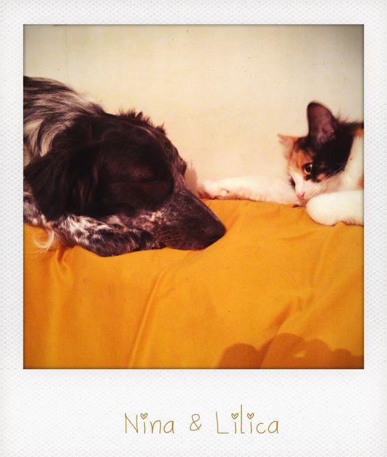 Lilica e Nina