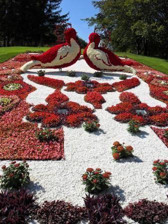鳥の形の綺麗で美しい花畑