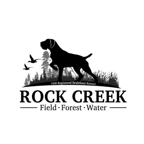 Versatile Dogtraining And Kennel Pet Logo Design Dog Logo