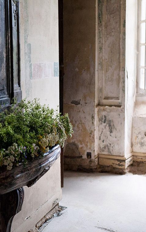 Beautifully aged and decaying walls within the French Chateau Gudanes. Weathered Walls & Déshabillé Lovely. #French #chateau #walls #weathered #serene