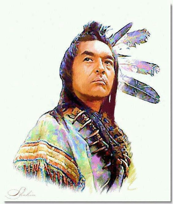 Image result for graham greene in dances with wolves