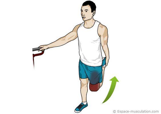 Étirements quadriceps
