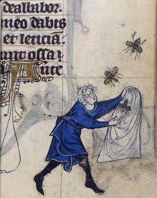 Medieval illuminated manuscript: Catching a swarm.: