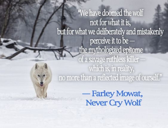 farley mowats never cry wolf essay Family members and friends remembered farley mowat as an impassioned writer and nature lover on tuesday at a private funeral for the internationally beloved author of classics including owls in the family and never cry wolf.