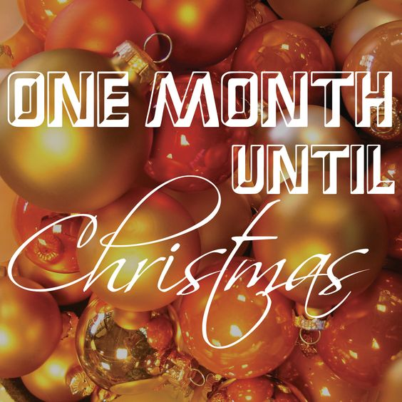 Only one month until Christmas! How's your holiday shopping going?