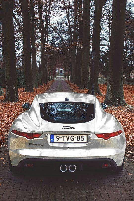 Delightful Merveilleux 43476 Best Jaguar Images On Pinterest | Jaguar, Vintage Cars  And Big Cats