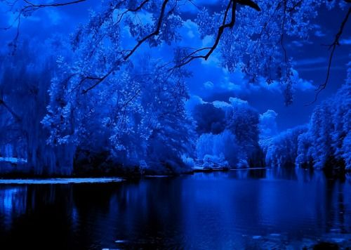 blue dreams by tony goegiadis