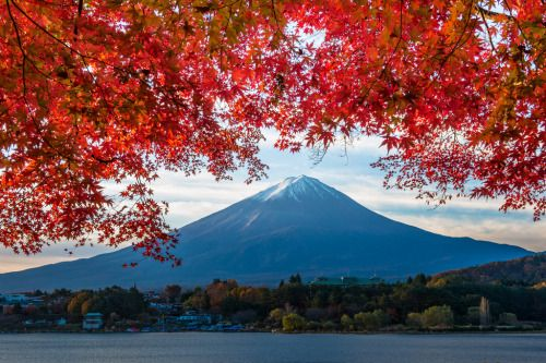 Autumn Fuji by shinichiro@OSAKA 河口湖 http://flic.kr/p/q6ScDz