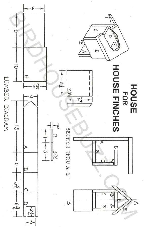 House finches bird house plans woodworking pinterest for Song bird house plans