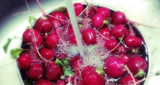Obst und Gemüse auf natürliche Weise porentief reinigen