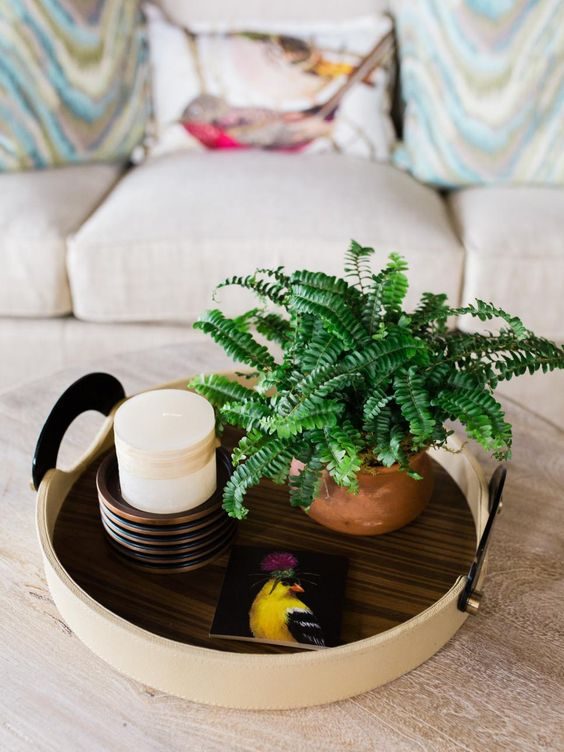 Dress up your coffee table with greens, such as Boston fern, and accessories. Since ferns love moist soil, using organic clay pots lined with pea gravel gives you the option to lift the plant and water for easy care, says Karin Jeffcoat, owner of Cote Designs, a floral and event studio in Aiken, S.C.: