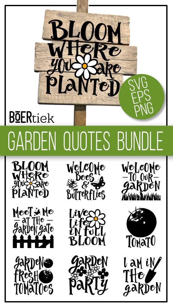 Pin On From Our Designers Craft Files Graphic Design Assets From Designbundles