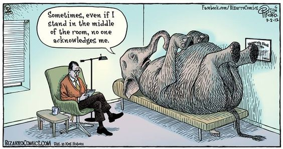 """To have 'an elephant in the room' means that there is an obvious & difficult situation or topic that people present do not want to admit to or discuss."""