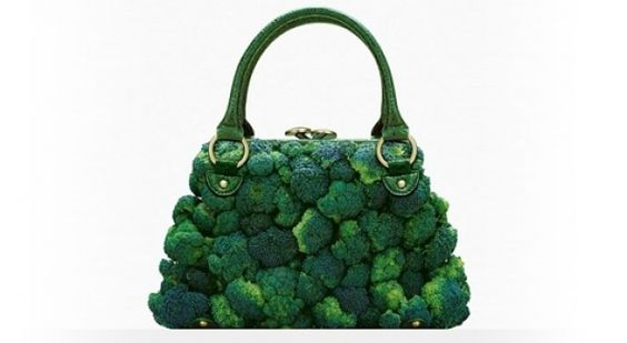 broccoli purse!!    http://torontostandard.com/article/lady-gaga-exchanges-meat-dress-for-meat-corset#