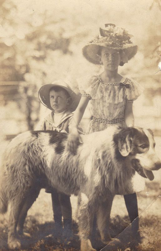Old Photo 1920's Newfoundland Dog Pretty Little Girl Big Flowers Hat Little Boy | eBay