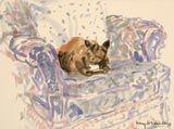 Lucy Willis - Animals