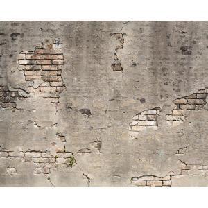 Wall Rogues Rose Pinnacle Wall Mural Fdm50578 The Home Depot Broken Concrete Concrete Wall Wall Murals
