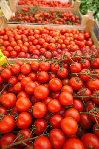 Cherry tomatoes for sale at Rome's Campo di Fiore
