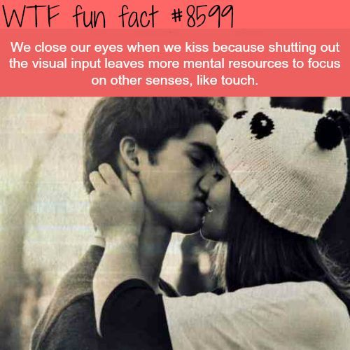 Crazy Facts Fun Facts Fact Facts Interesting Facts Science