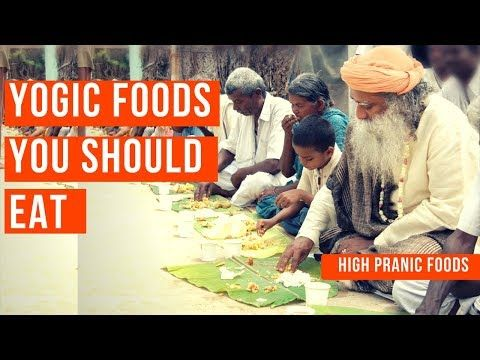 Youtube Types Of Food Genetically Modified Food Food Lists