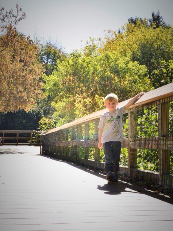 Toddler boy fall pictures. Nikon D800E