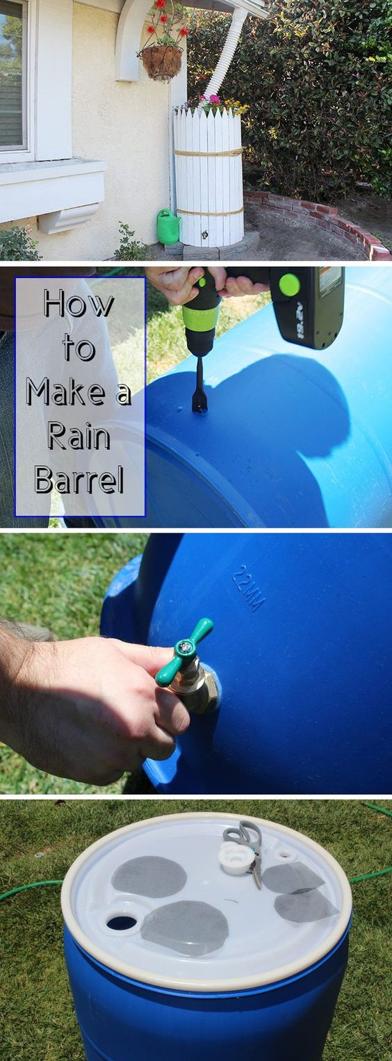 Conserve precious rain water and save money by making your own rain barrel. Use it to water your plants and lawn -- 1 inch of rain falling off a 1,000 square foot house can equal about 600 gallons of water! Don't let any of that go to waste! DIY instructions here: http://www.ehow.com/how_4604915_make-rain-barrels.html?utm_source=pinterest.com&utm_medium=referral&utm_content=freestyle&utm_campaign=fanpage:
