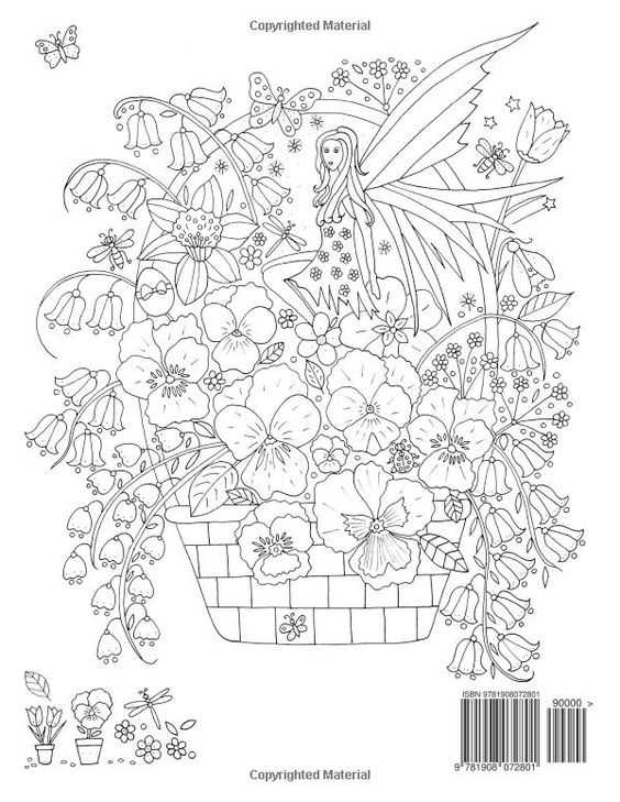 Faerie Garden Spring: Colouring Book: Amazon.co.uk: De-ann Black: 9781908072801…